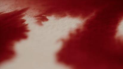 Salta Blood